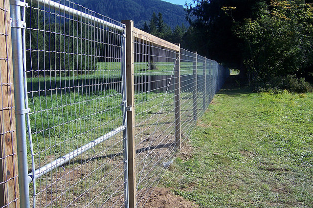 Protecting your garden with rabbit and deer fencing for How to keep rabbits out of garden without a fence