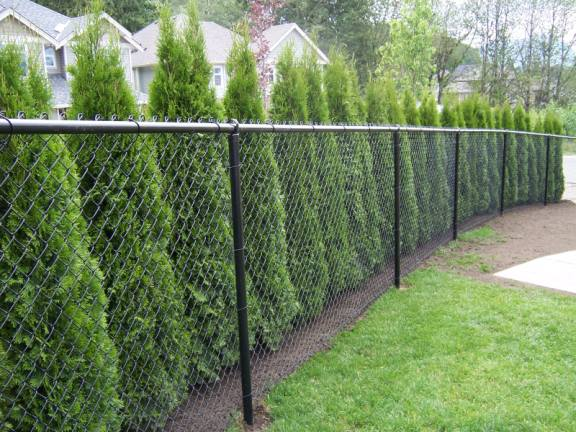 Choosing the right type of fencing for your property