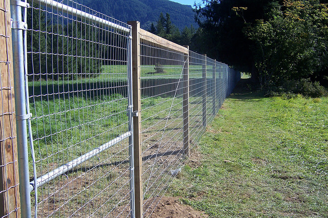 Fencing and fauna keeping animals out of your yard for Fishing line deer fence