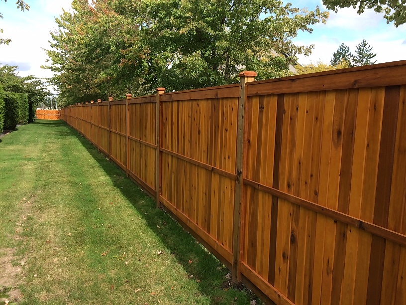 What Steps Should I Take For A Long Lasting Wood Fence