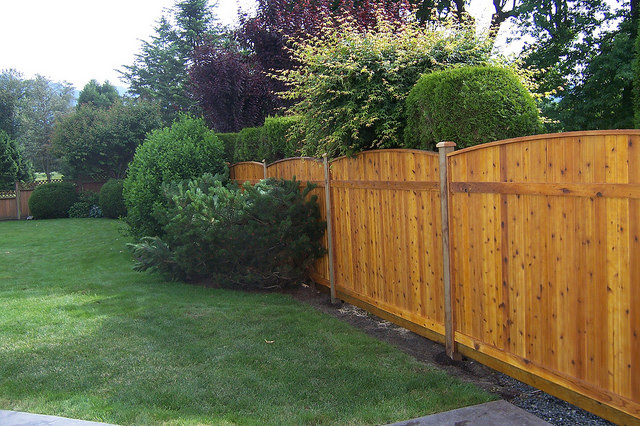Pre-stained fencing Fraser Valley
