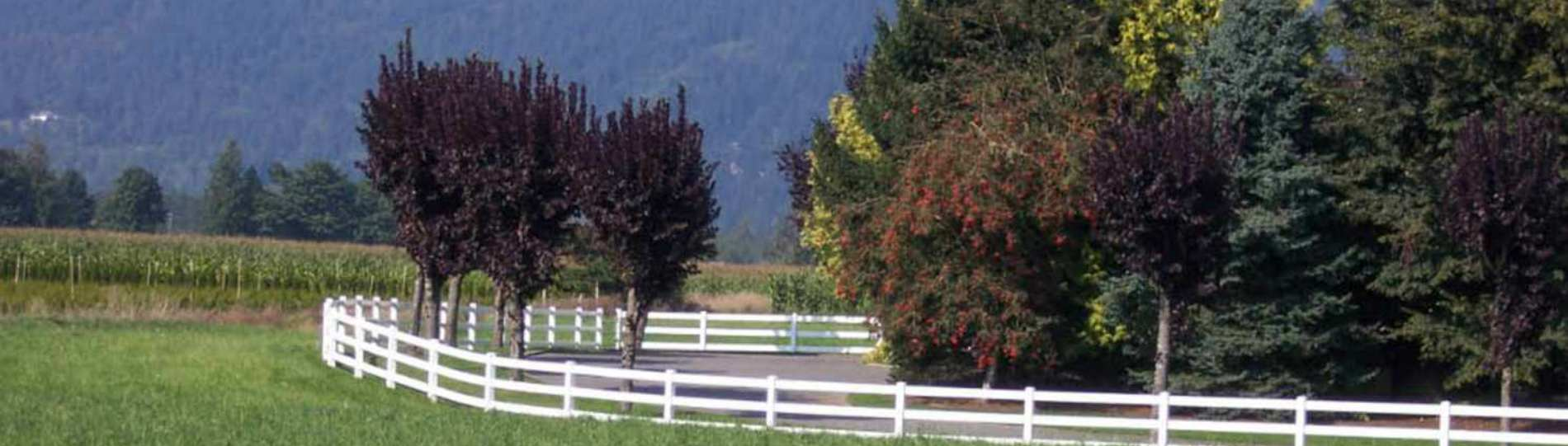 Chilliwack fencing