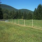 4' Page Wire Fencing