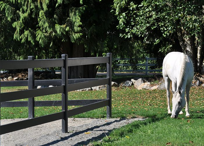 What do I need to know before building a fence for my horses?