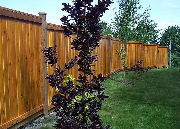 3 Great Benefits of Privacy Fencing for Your Yard