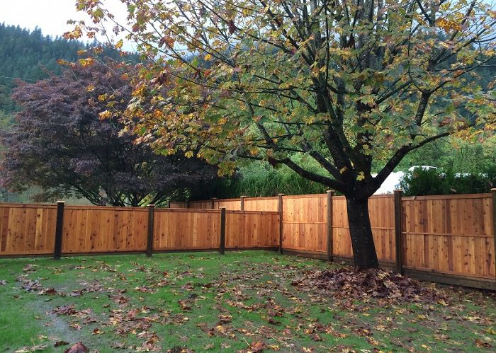 How do I know if my fence needs repairs or maintenance