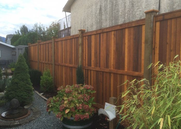 5 Eco-Friendly Reasons To Choose Cedar Fencing