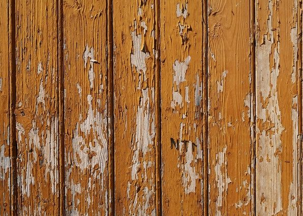 Why Cleaning Your Fence Is Important